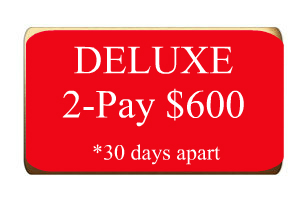 DELUXE-2-pay